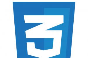 CSS3 logo