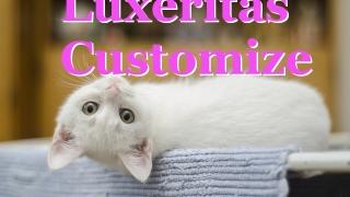 ルクセリタス カスタマイズ Luxeritas