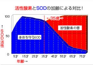 SOD、ROS活性酸素