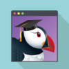 Puffin Browser on Windows